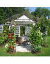 hochwertiger Pavillon Sale 300cm
